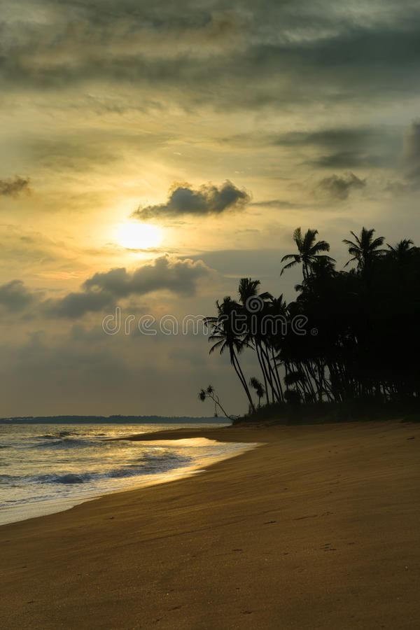 Sunset on ocean coast. Beautiful shores of the Indian ocean royalty free stock photos
