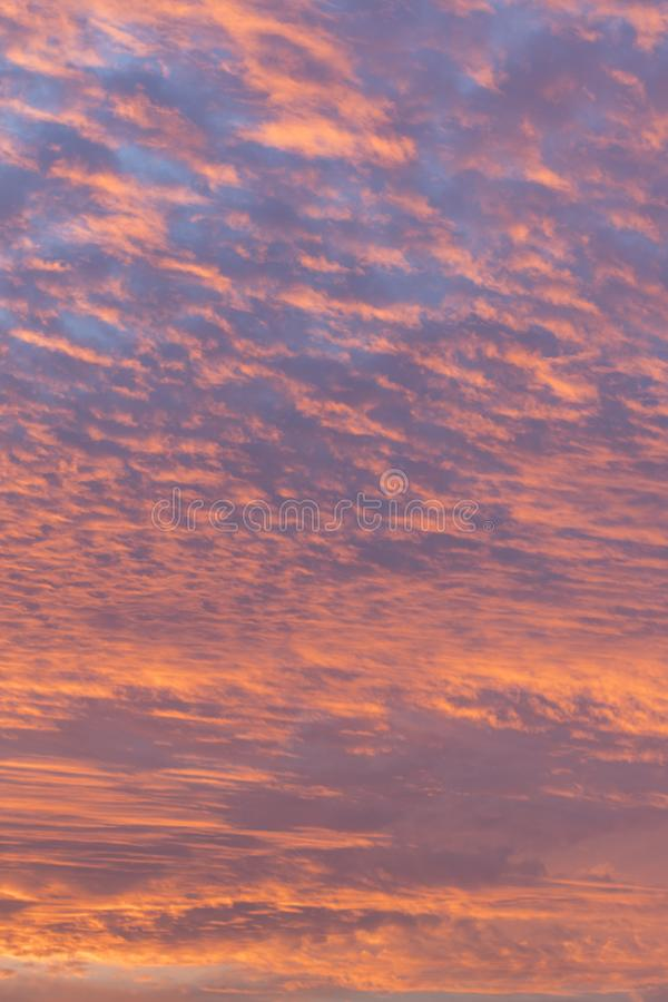 sunset with orange sky. Hot bright vibrant orange and yellow colors sunset sky. sunset with clouds. vertical photo royalty free stock photos