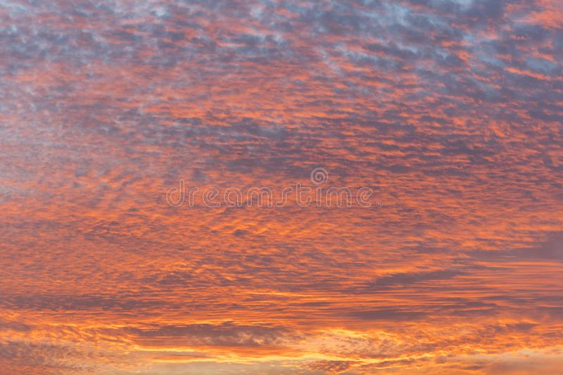 Sunset with orange sky. Hot bright vibrant orange and yellow colors sunset sky. sunset with clouds.  stock images