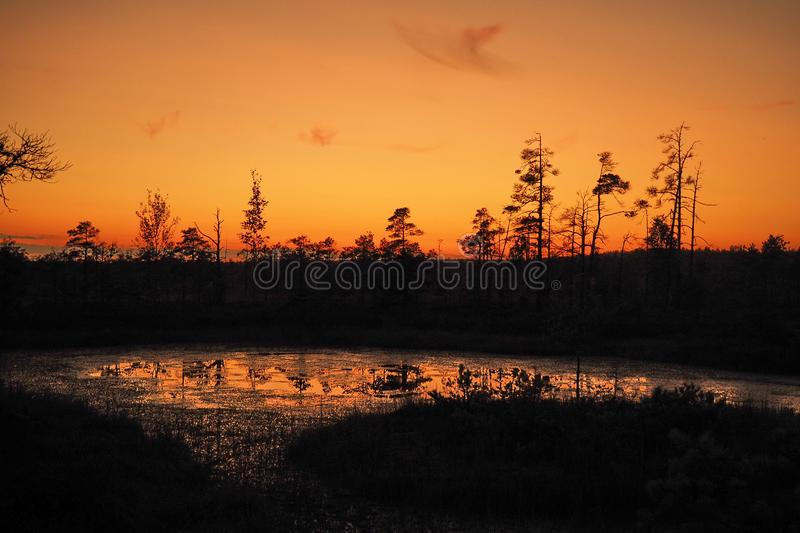Sunset and orange sky observing over swamp stock photography