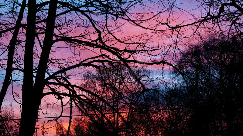Sunset outside royalty free stock image