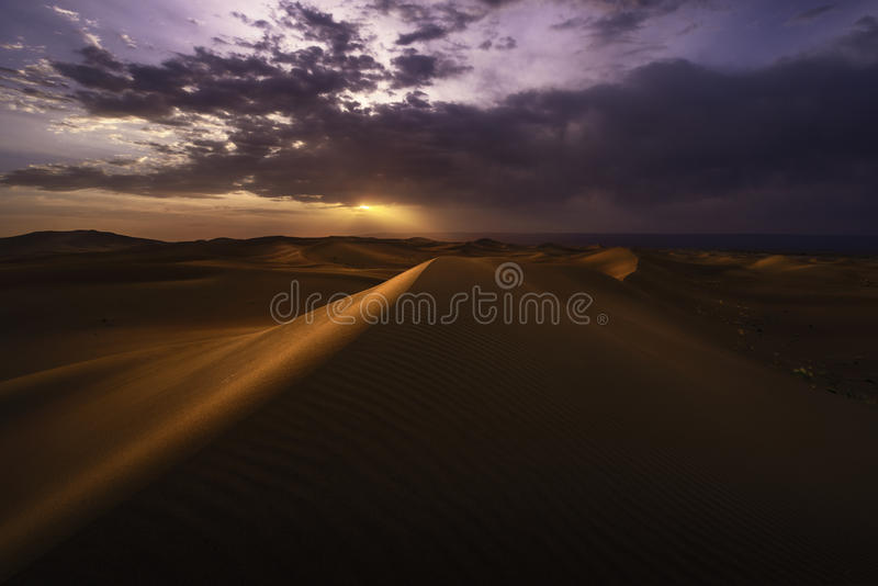 Sunset over the desert royalty free stock images