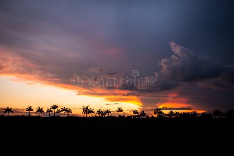 Sunset over Everglades National Park, Florida. stock photos