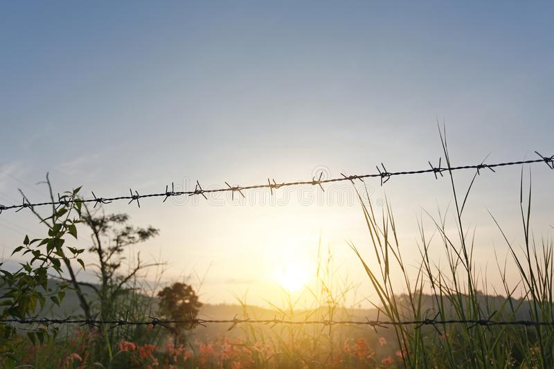Sunset over fields with barbed wire fences.  stock photo
