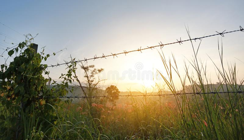 Sunset over fields with barbed wire fences.  stock photos