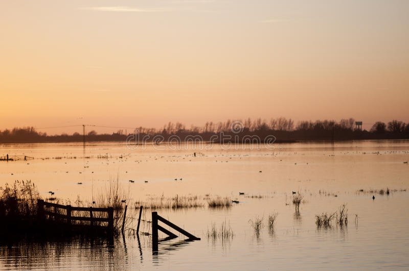 Download Sunset Over Flooded Wetlands. Stock Photo - Image: 28626054