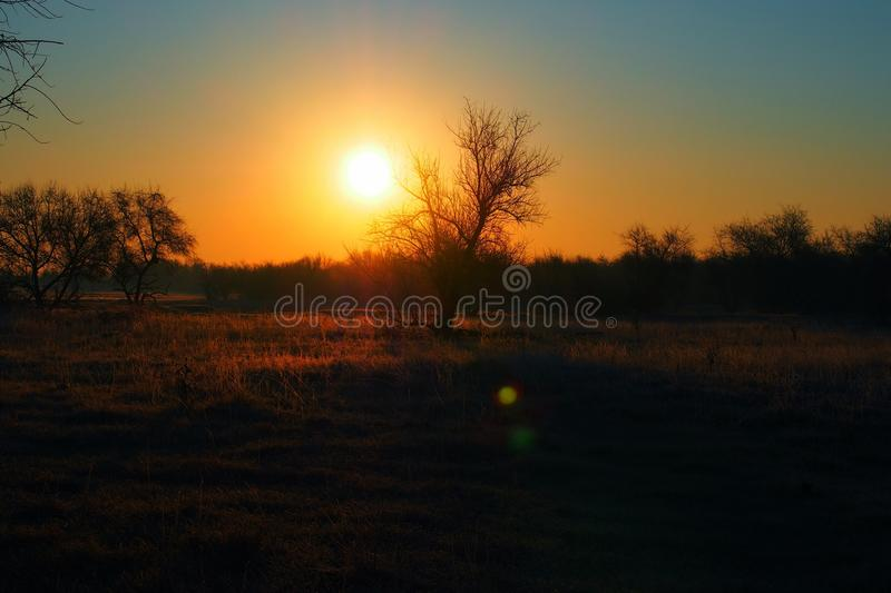 Sunset over grassland royalty free stock photography