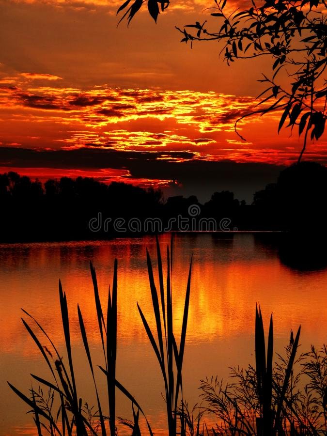 Sunset. Over the lagoon Pińczów stock photo
