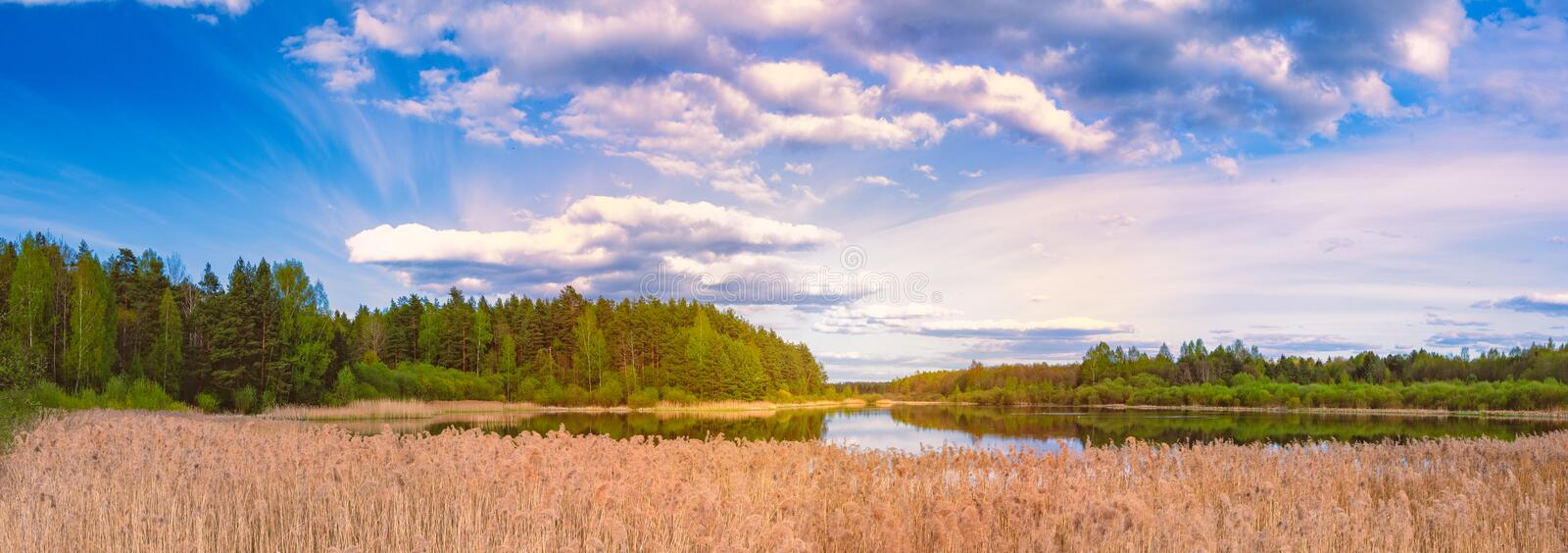 Sunset over lake with forest. Blue sky and clouds stock image