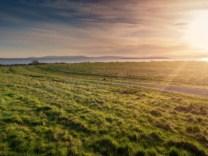 Sunset over a meadow. Green grass, soft evening lighting, Sun rays and flare, Warm glow. Blue cloudy sky royalty free stock images