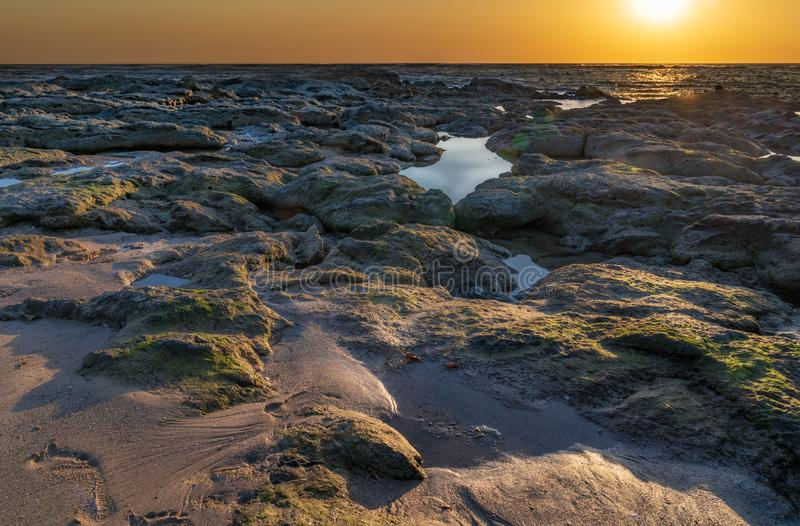 Sunset over the ocean horizon with reflections and sun flares. On beach an rocks with green moss royalty free stock photo
