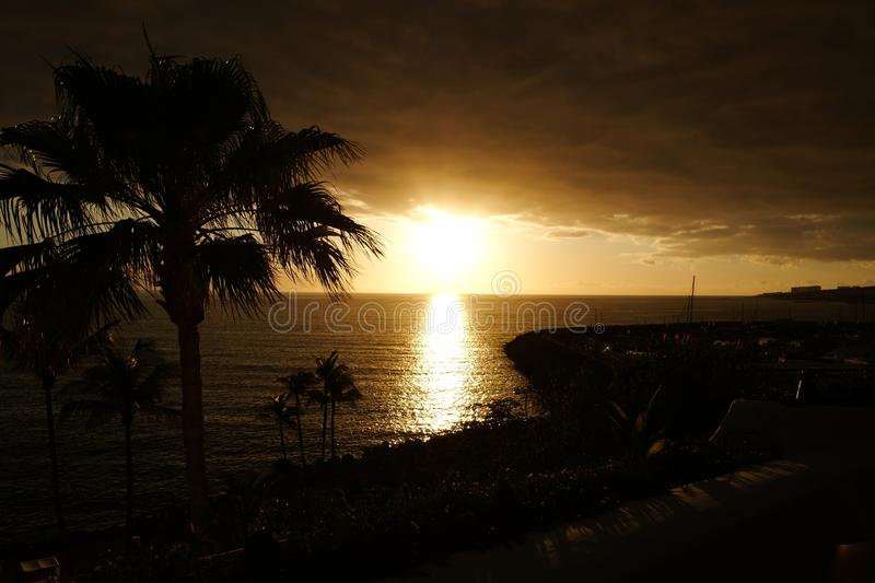 Sunset over ocean and palms silhouette royalty free stock photo