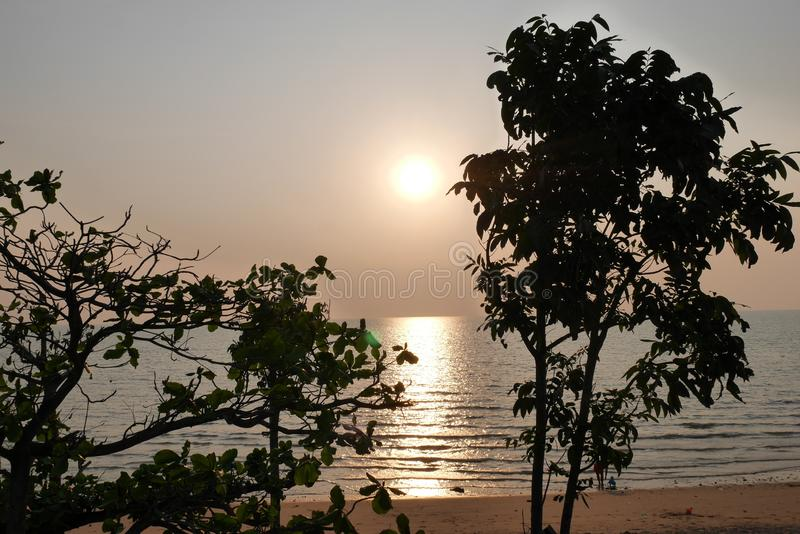 Sunset over the over the Gulf of Thailand through the trees royalty free stock photo
