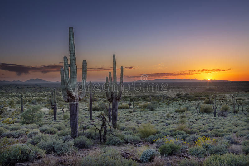 Sunset over the Phoenix Valley in Arizona stock image