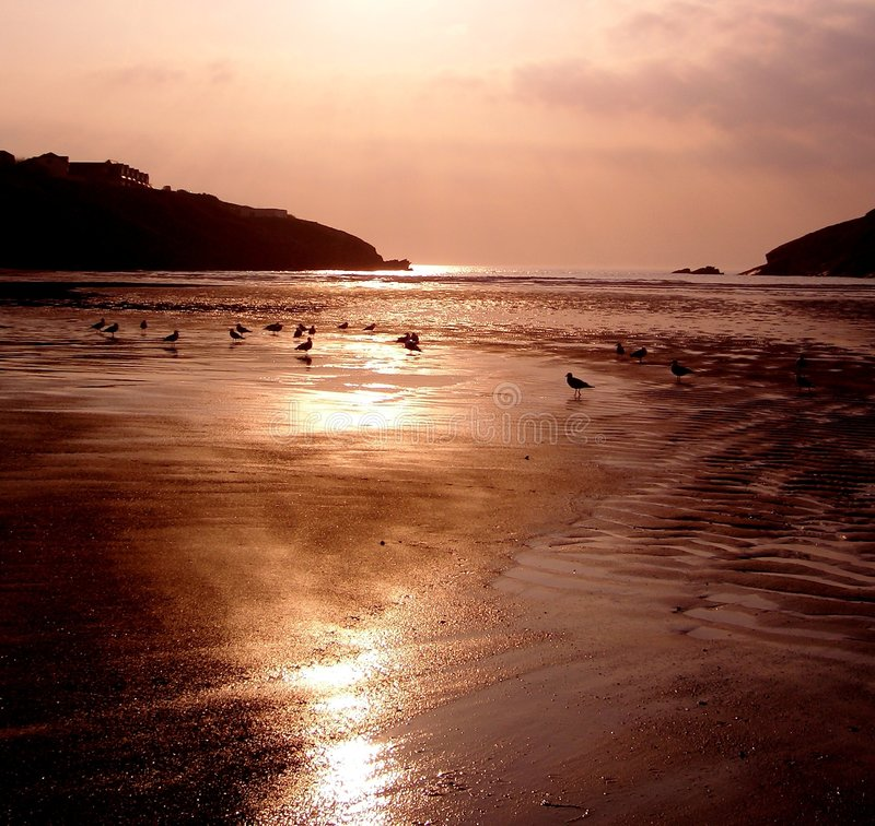 Download Sunset Over Porth Beach, England Stock Photo - Image of nature, birds: 4115014