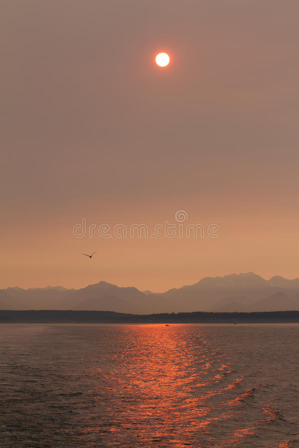 Download Sunset over Puget Sound stock photo. Image of sunset - 22513720