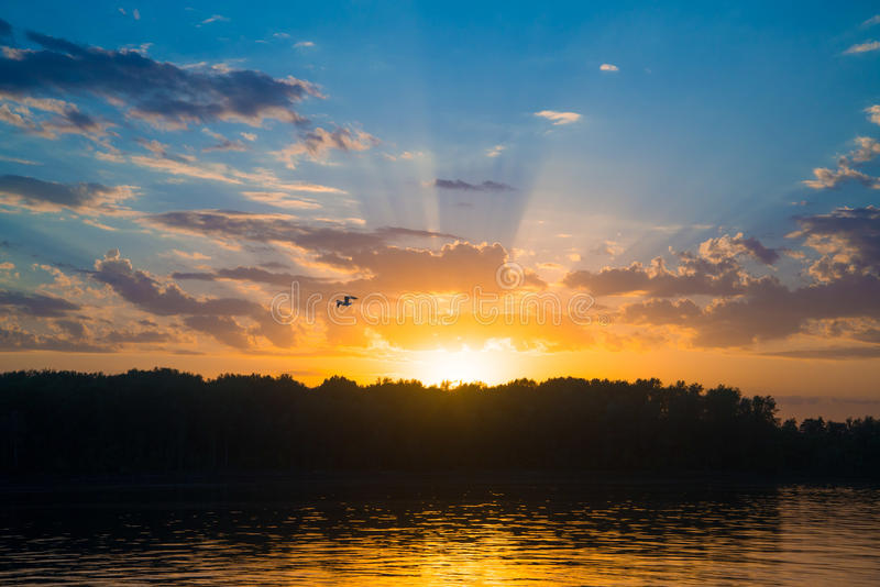Download Sunset Over River With Forest Stock Photo - Image: 34362652