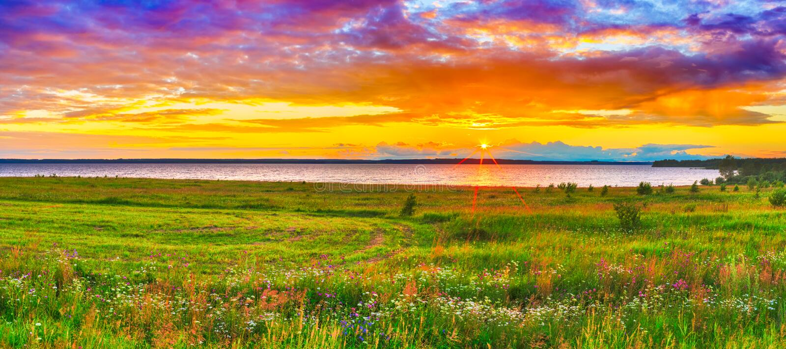 Sunset over the river Kama. Panorama. Sunset over the river Kama. Flowers meadow on the foreground. Panorama stock photography
