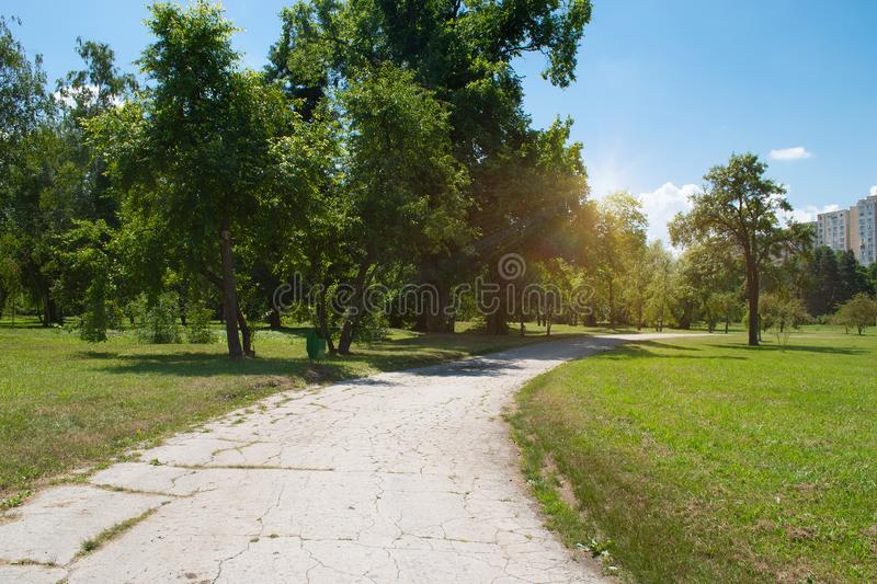 Sunset over the road. Sunrise in summer beautiful park. Bright sunny day in park. The sun rays illuminate green grass and trees. royalty free stock photos