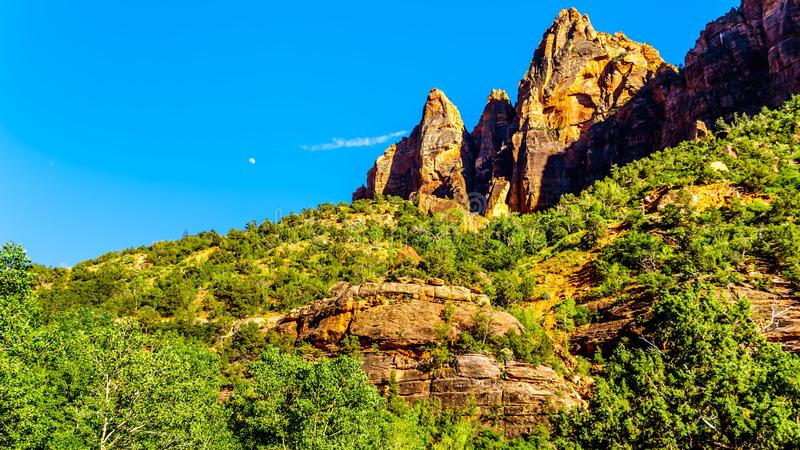 Sandstone mountains in Zion National Park in Utah, United States. Sunset over the rugged sandstone mountains in Zion National Park in Utah, United States royalty free stock photo