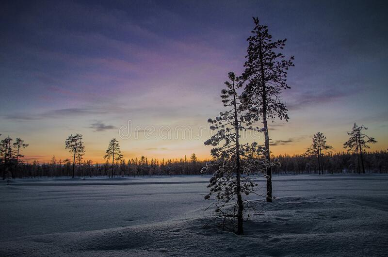 Sunset over snowy field royalty free stock images