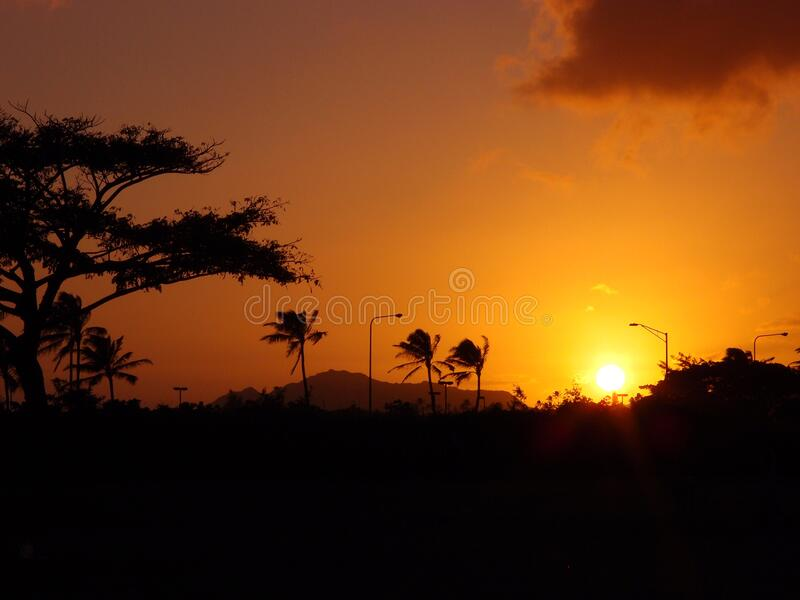 Sunset over trees with Diamond Head Crater in the distance stock photos