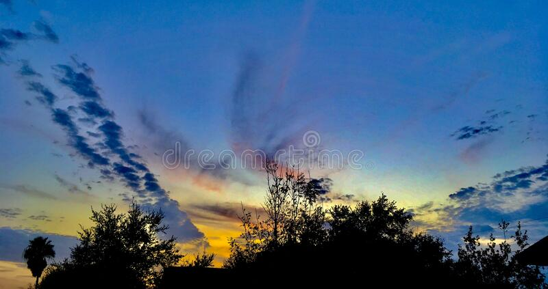 Sunset over treetops royalty free stock images