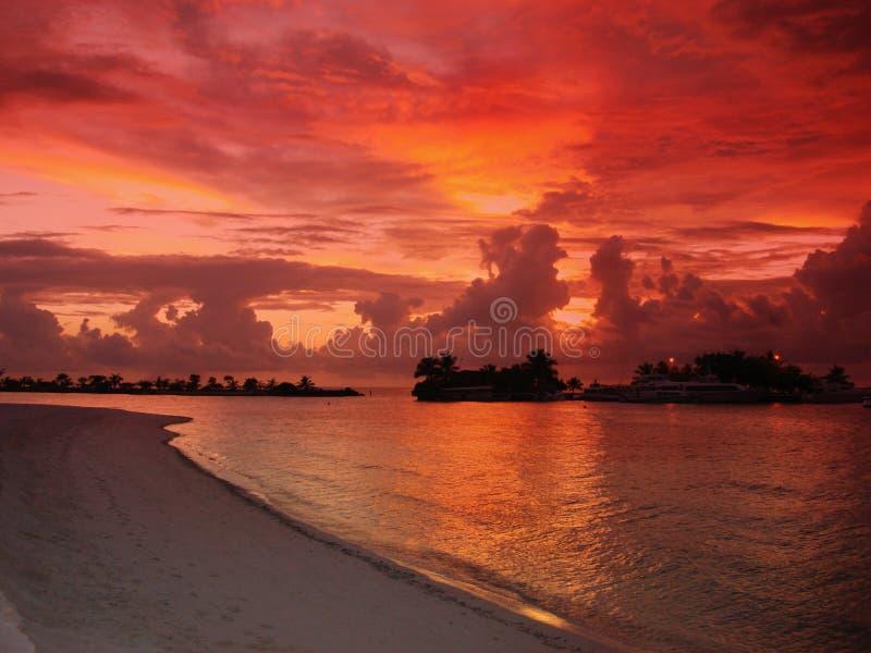 Sunset over tropical beach royalty free stock photos