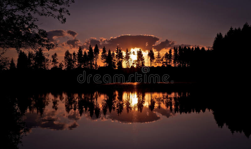 Sunset. Over water,  behind the trees royalty free stock image