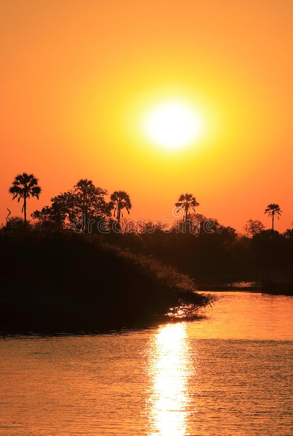 The sunset makes a reflection on the Zambeze river. stock images