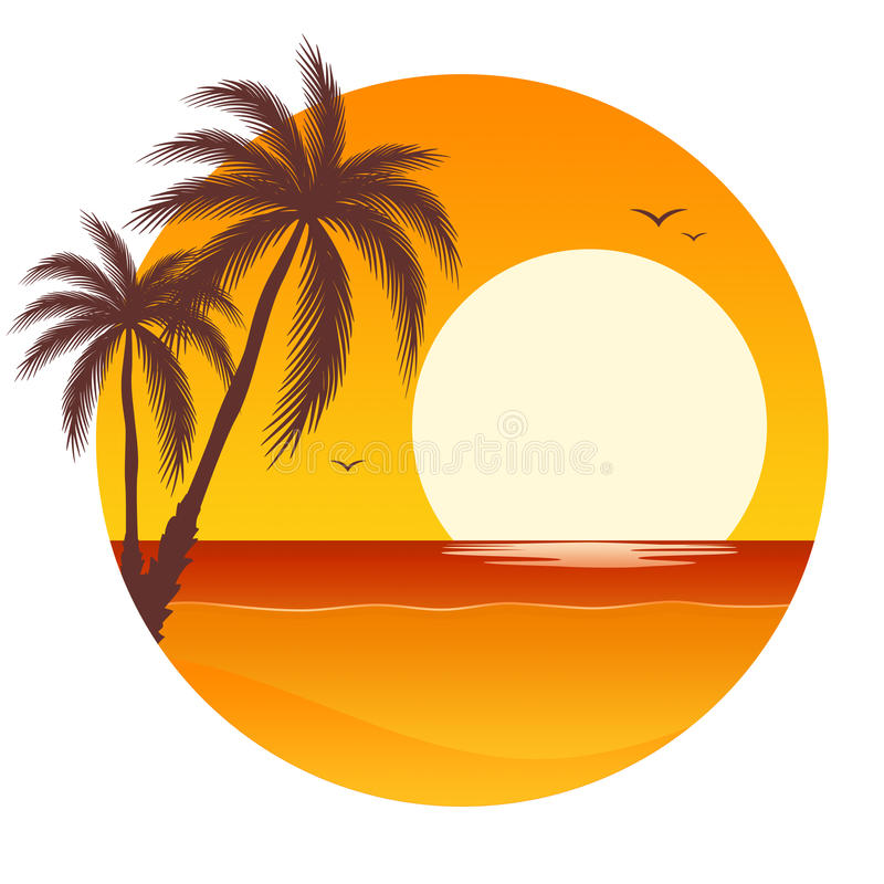 sunset with palm trees stock vector illustration of
