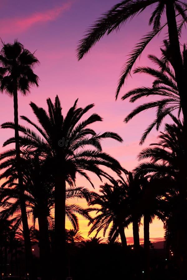 Sunset in Palma de Majorca stock photography