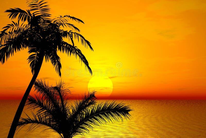 Sunset. Palms royalty free illustration