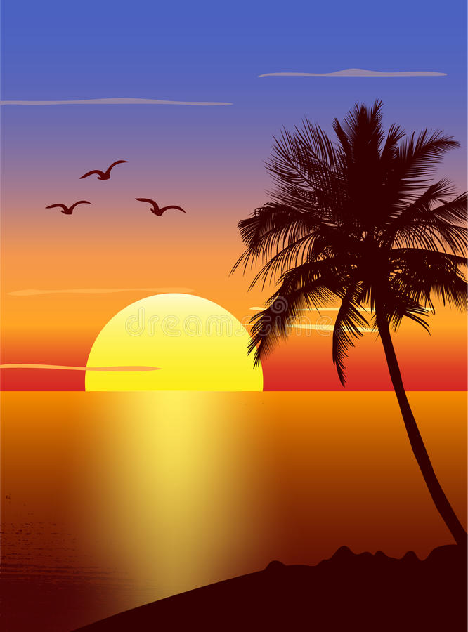 Sunset with palmtree silhouette stock illustration