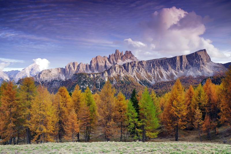 Sunset panoramic view of Croda da Lago in autumn. Croda da Lago is a small mountain chain in the central Dolomites in Veneto, northern Italy, just east of the royalty free stock image