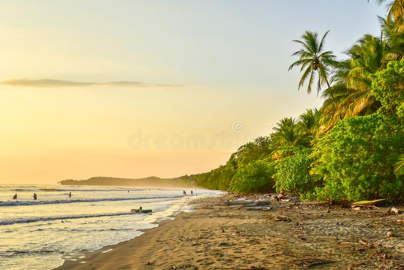 Sunset at paradise beach in Uvita, Costa Rica - beautiful beaches and tropical forest at pacific coast of Costa Rica - travel royalty free stock photo