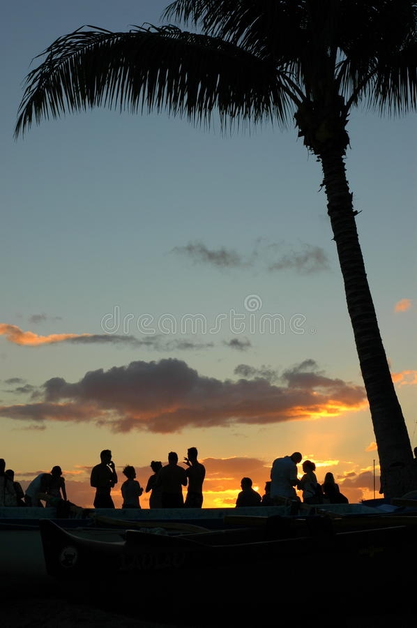 Sunset Party royalty free stock images