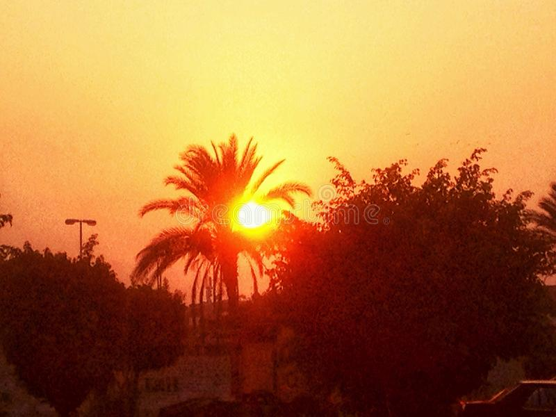 Sunset photo. Sunset in my hometown portsaid royalty free stock photography