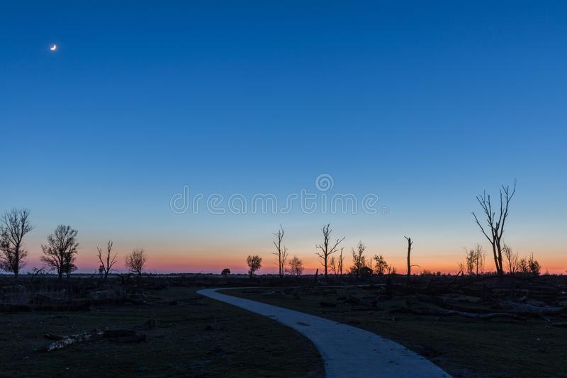 Sunset in plain landscape with barren trees royalty free stock image