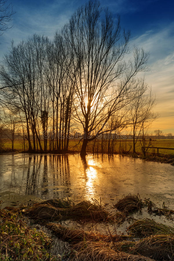 Sunset On Pond Royalty Free Stock Images