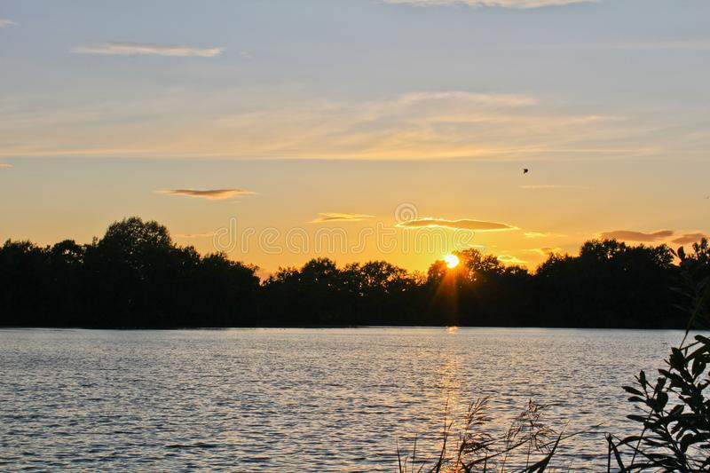 Sunset on pond with silhouette of trees and bird, Czech landscape.  royalty free stock images