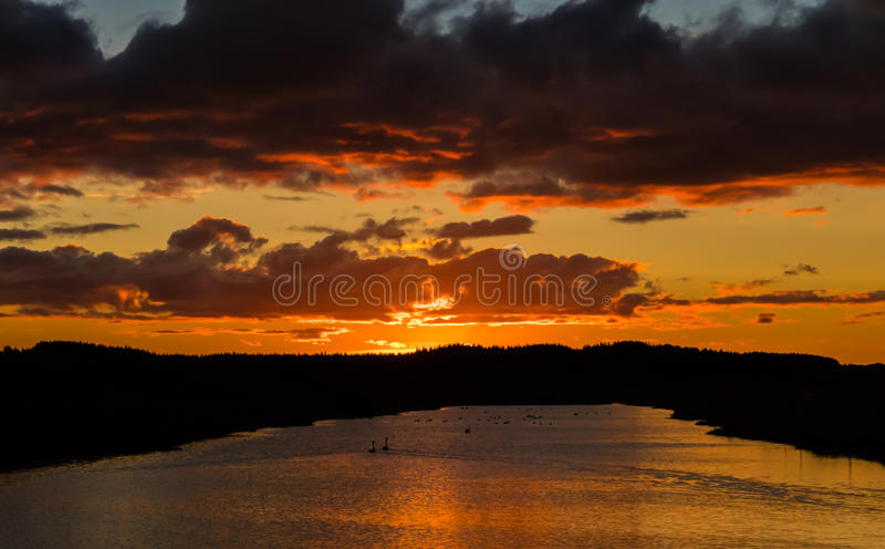 Download Sunset Pond stock photo. Image of dark, water, sunset - 91513636