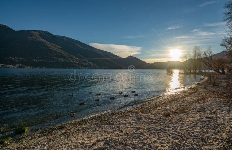 Sunset in port of Ascona. Sunset over lake Maggiore in park of Ascona port royalty free stock image