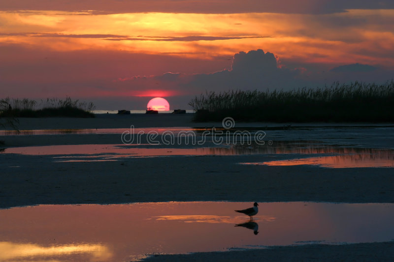Sunset Reflections royalty free stock photos