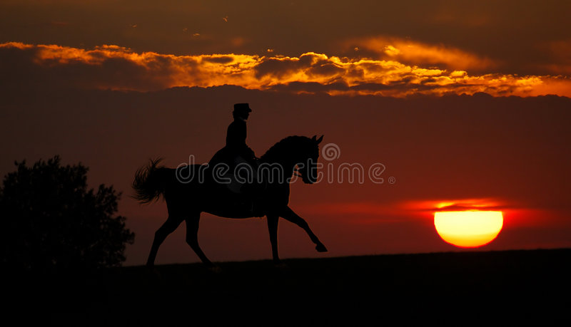 Download Sunset And Rider (silhouette) Stock Image - Image: 3703621