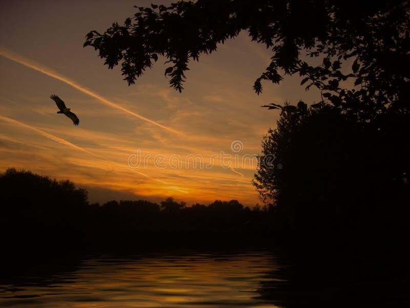 Sunset On River Free Public Domain Cc0 Image
