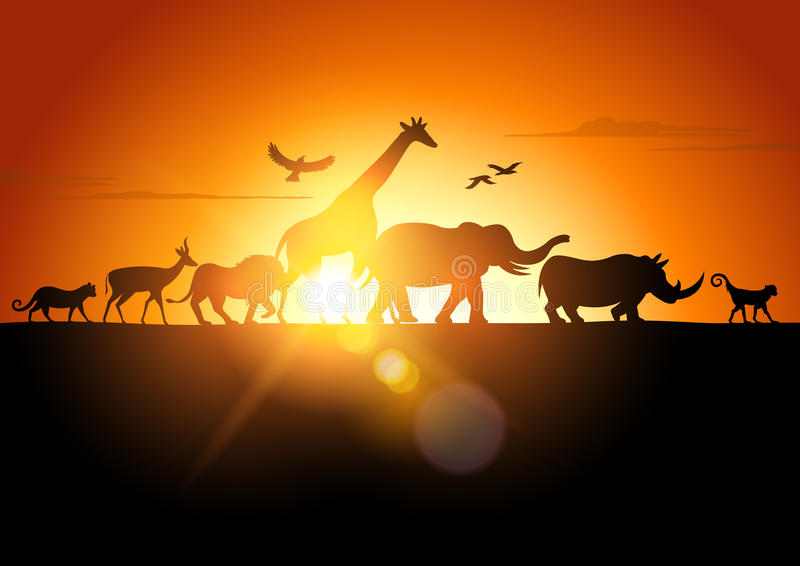 Sunset Safari. Wildlife silhouetted against a sunset - vector illustration
