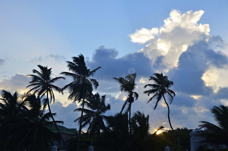 Sunset in San Pedro, Belize royalty free stock image