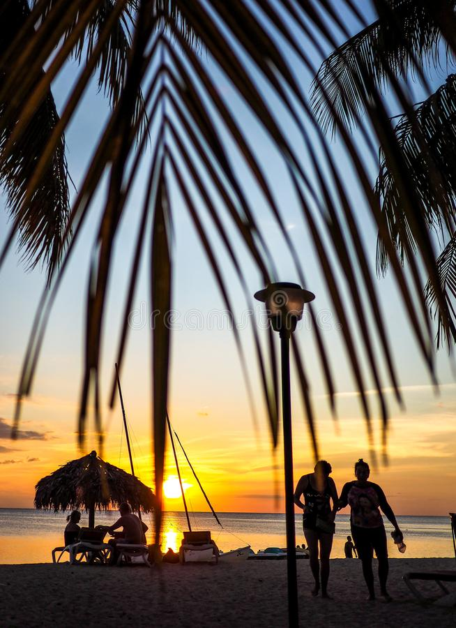 sunset scene framed by palm leaves stock photos