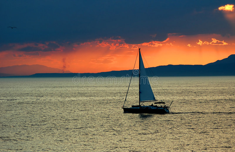 Download Sunset at sea stock photo. Image of orange, bird, silhouette - 464844